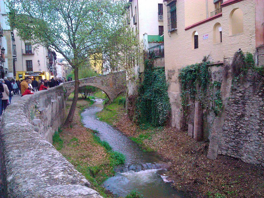 Río Darro (Granada)