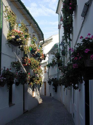 Calle Real de la Villa. Priego (Córdoba)