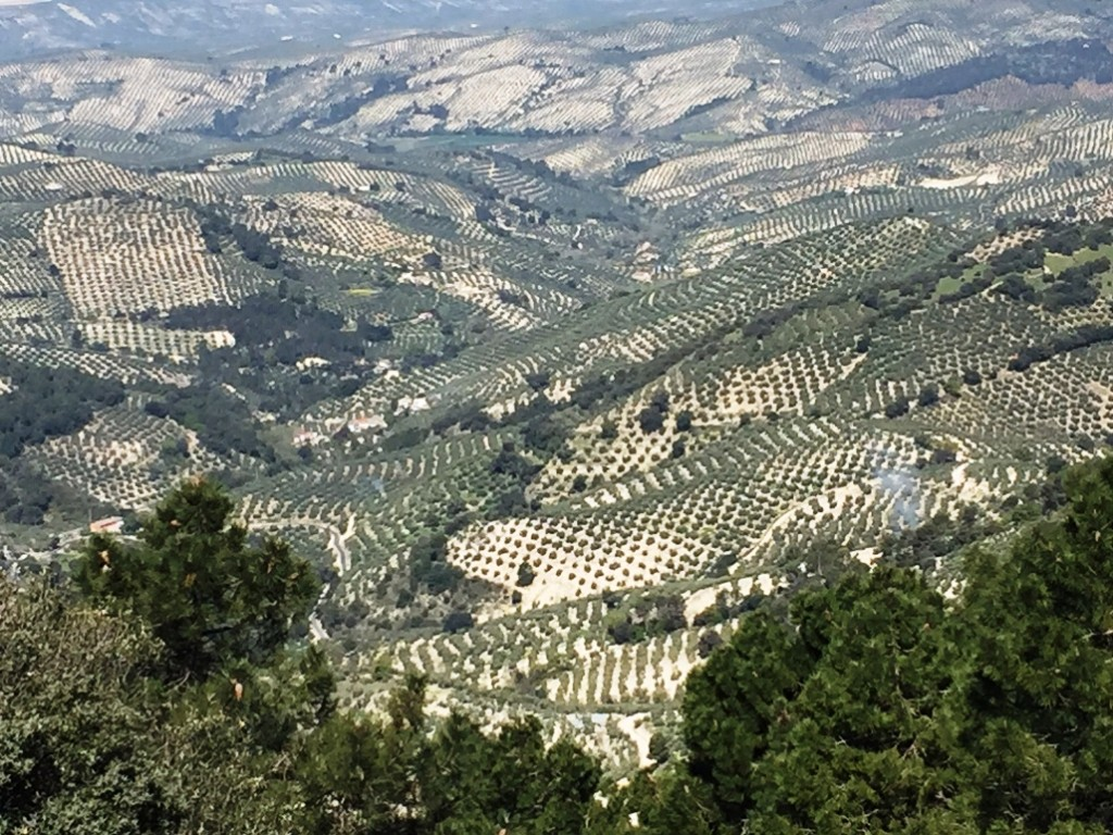 Sierra de Cazorla (Jaén). Vista desde el Mirador Paso del Aire. JFME