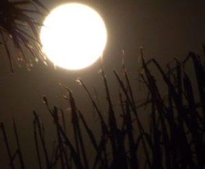 Luna en Menorca. Por Silvia Núñez.